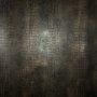 Alligator- Black Caiman Wallpaper